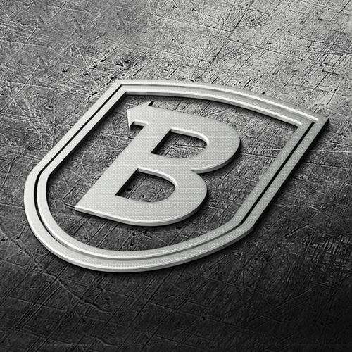 Backsafe Systems crest machined out in metal